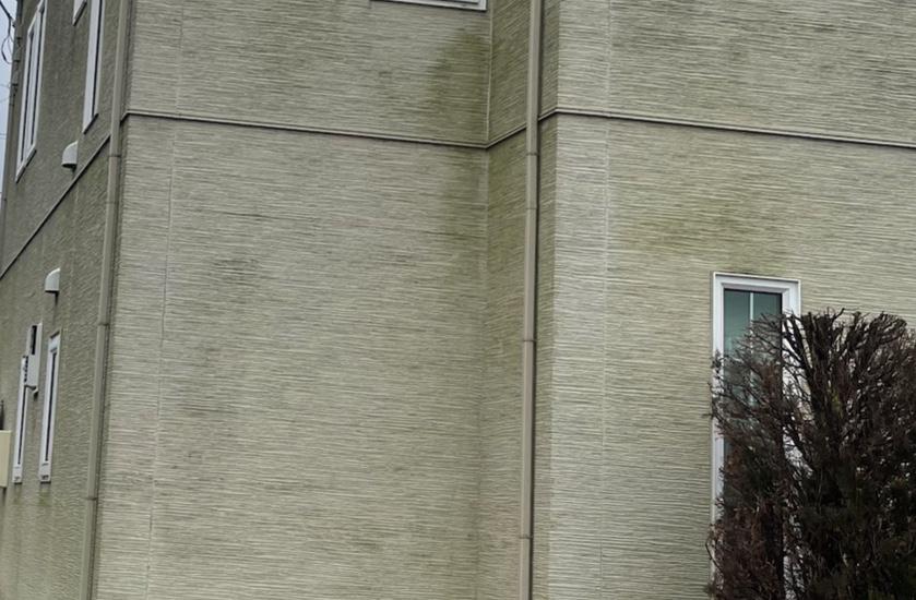 """お住まいの外壁についた""""コケ""""。気になる方必見⁉︎"""
